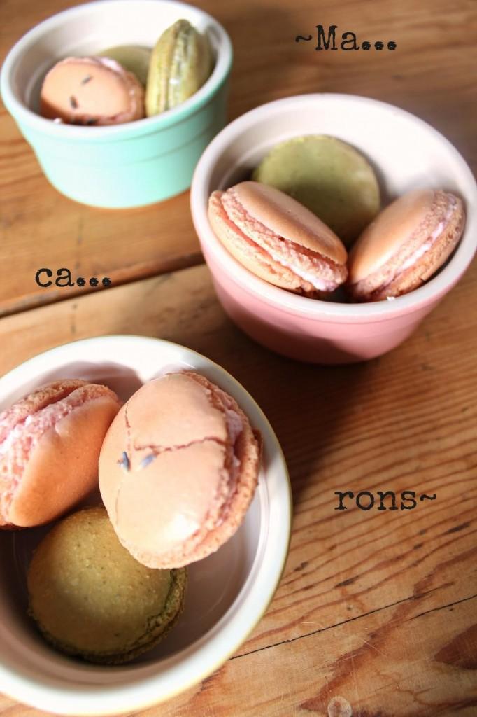 Springtime macarons 1