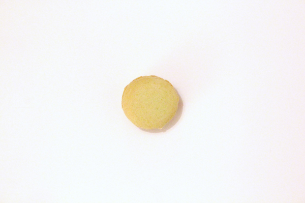 Macaron n°22